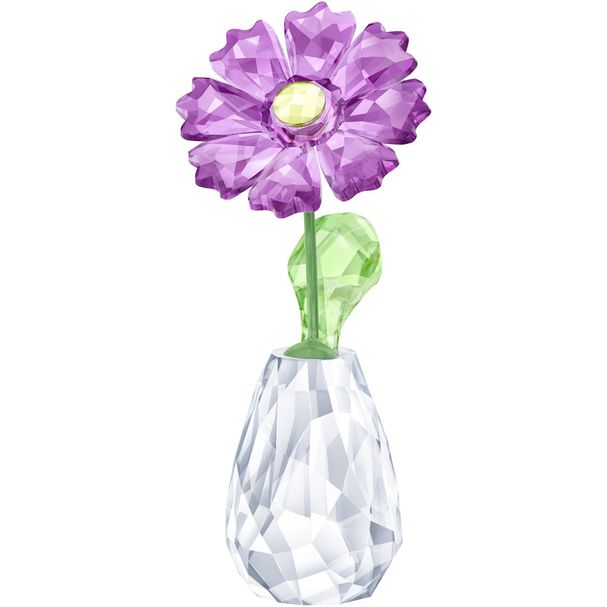 Sueños-florales-–-Gerbera